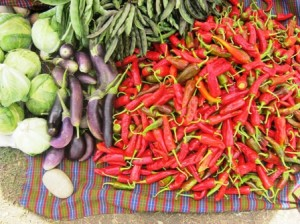 Chiles and seasonal vegetables